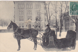 22675 SLEIGH USED IN MONTREAL  Montreal Import 294 - Traineau Cheval Neige - Montreal