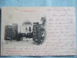 BOISSY SAINT ANTOINE (BOUSSY) /ENTREE DE LA FERME  / LE PIGEONIIER / BELLE CARTE1902 - Autres Communes