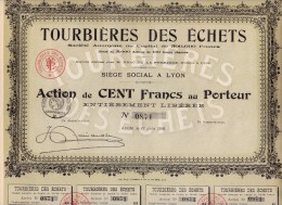 ACTION DE 100 FRANCS -TOURBIERES DES ECHETS -AIN -  1918 - Agriculture