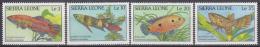 Sierra Leone - Leona 1988 Yvert 880-83, Fauna, Fish - MNH - Sierra Leone (1961-...)