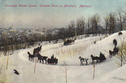 22722 CANADA - Quebec MONTREAL Sleighing On Mount Royal, Park - Montreal Import N°102