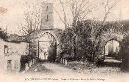 CPA 38 ISERE . COLOMBIER-SAUGNIEU  .  Entée Du Château Et Porte Du Prince D'Orange . Pap. Grivoz Aimé, Crémieu - Crémieu