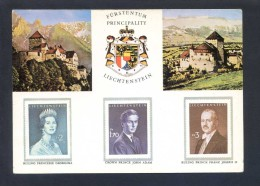 Liechtenstein. Ed. Quick Tourist Office - Vaduz. Escrita. - Sellos (representaciones)