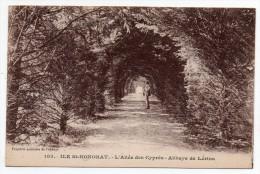 Cpa 06 - Ile Saint-Honorat - L'allée Des Cyprès - Abbaye De Lérins - Autres Communes