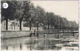 ORGES Passerelle Sur La Dhuy - France