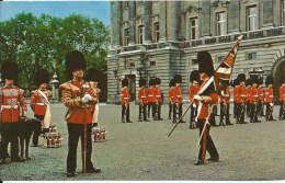 Changing Of The Guards No 191 Natural Colour Series The Photographic Greeting Card Co. Ltd. London - Buckingham Palace