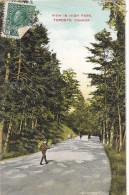 22777  CANADA QUEBEC TORONTO , View In Hight Park - Souvenir Card NCO -enfant - Toronto