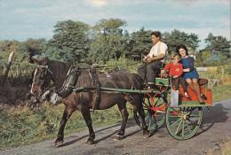 Jaunting Car, Ireland -  NPO DEXTER Unused - Ireland
