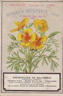 Chromo Armand Gontier Graine Jardin D´essai Fleur Plante à Fontenay Aux Roses Eschsholtzie De Californie - Unclassified