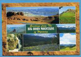 Greetings From The BIG HORN MOUNTAINS  Of Wyoming - Etats-Unis