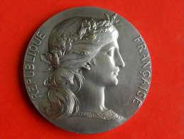 Médaille En Argent 1931 Société Aviculture - Seine - 62,64 Grs - 50 Mm - Daniel DUPUIS - Professionali / Di Società