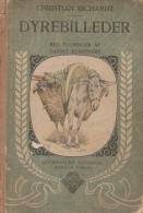 Ancien Livre 1909 Danemark Christian Richardt Dyrebilleder Otto Hansen Gyldendalske Boghandel Nordisk - Scandinavian Languages