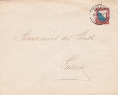 Pro - Juventute  1920 : No J16 Sur Lettre Oblitérée Luzern Le 13.12.1920 - Briefe U. Dokumente