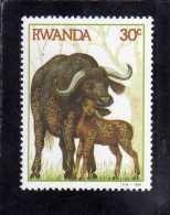 RWANDA 1984 FAUNA ANIMAL BUFFALOES ANIMALS BUFFALO WITH CALF ANIMALI BUFALI ANIMALE BUFALO CON VITELLO MNH - Rwanda