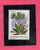 RWANDA 1979 FLORA PLANTS TREES UMWUNGO POLYSCIAS FULVA PLANT TREE ALBERI PIANTE ALBERO PIANTA  MNH - Rwanda