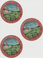 LOT De  3 étiquets Fromage  :  Camenbert    No Copy : E. FOURQUEMAIN A ST  Nicolas De  Vignats Nécy Calvados Par Falaise - Formaggio