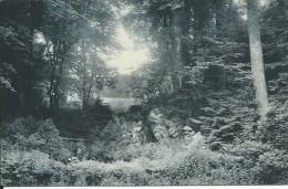 HOUYET :  Château Royal D´Ardenne,  La Grotte - Houyet