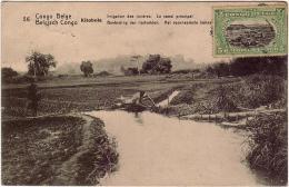 AFRIQUE / CONGO BELGE / KITOBOLA/ Irrigation Des Rizières.Le Canal Principal (Entier Postal) Voir Le Scan - Congo Belge - Autres
