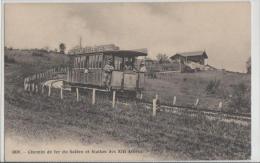 France - Haute Savoie - Chemin De Fer Du Saleve Et Station Des XIII Arbres - Trains