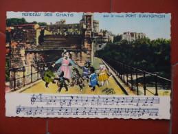 AVIGNON Rondeau Des Chats Pont - Avignon