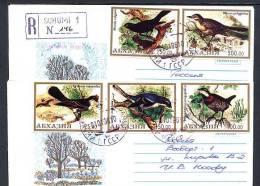 1996, 2 Enveloppes Avec Timbres OISEAUX. RABK613 - Birds