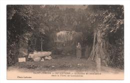 CP , 87 , SAINT JUNIAN , Ostentions : St-Julien en m�ditation dans le foret de Comadoliac , Vierge
