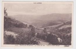 ENVIRONS DE ROANNE - N° 5133 - LA CROIX DU SUD - VALLEE DE SAINT RIRAND - Roanne