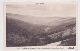 ENVIRONS DE ROANNE - N° 5134 - LA CROIX DU SUD - VALLEE DE SAINT BONNET - Roanne