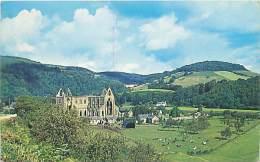 TINTERN ABBEY - Monmouthshire