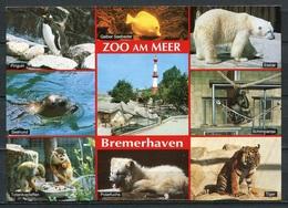 Zoo Am Meer Bremerhaven / Mehrbildkarte - N. Gel. - En Bestell-Nr. Brha 79  Schöning Verlag - Bremerhaven
