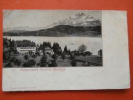 31159  PC: SWITZERLAND: LU LUCERNE: Polytechnic Chalets, Seeburg. - LU Luzern