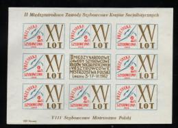 POLAND 1962 15TH GLIDER FLIGHT POST SHEETLET NHM LESZNO II SOCIALIST COUNTRIES INTERNATIONAL GLIDING COMPETITION FLIGHT - Airmail
