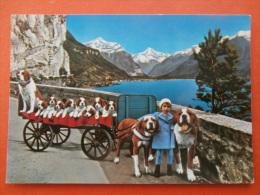 31181 PC: SWITZERLAND: LU Lucerne: Am Vierwaldstattersee  Axenstrasse, Fluelen Mit Bristenstock. - LU Luzern