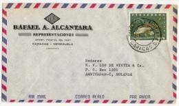 Venezuela 1966, Cover To Holland, Rafael A. Alcantara Representaciones - Fish - Venezuela