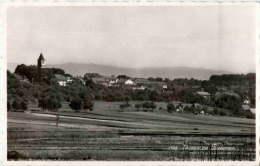 Täuffelen - Bielersee - BE Berne