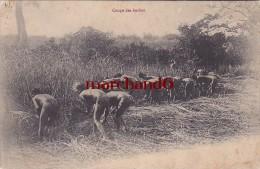 Afrique Guinée Coupe Des Herbes Africains Fesses Nues Classement Pas Certain - Guinée Equatoriale