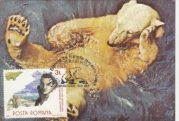 POLAR BEAR, CONSTANTIN DUMBRAVA EXPLORER, CM, MAXICARD, CARTES MAXIMUM, 2004, ROMANIA - Antarctic Wildlife