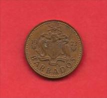 BARBADOS, 1973, XF Circulated Coin, 1 Cent, Bronze,  Km10,  C1837 - Barbados