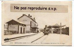 - 1955 - SEMBADEL GARE - ( Htr-Loire ), Un Croisement De Trains, Gare, Sous La Neige, Non écrite, BE, Scans. - Autres Communes