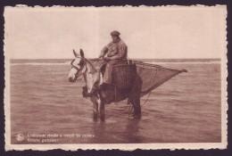 St Idesbald - Pêcheur à Cheval  // - Koksijde