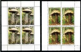San Tome And Principe 1992 Mi 1346-1350 Block Of 4 Mushroom - Pilze