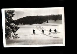 25 MOUTHE RISOL Sports Hiver, Champ De Neige Des Baties, Ski De Fond, Ed Vuez, CPSM 9x14, 1938 - Mouthe