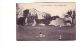 VELINES     VIEUX CHATEAU DE SARDY - France