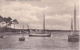 CPA Île-aux-Moines - La Pointe Du Bois D'Amour Et Port-Blanc (0654) - Ile Aux Moines