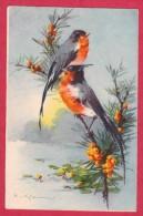 FANCIES  BIRDS CARDINAL COUPLE  BAIES GENEVRIER  C KLEIN    AQUARELLE DESSIN  HWB - Klein, Catharina