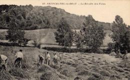 """Neuf Chatel En Bray Rare Et  Superbe Vue Agricole Animée """"récolte Des Foins"""" TBE - Neufchâtel En Bray"""