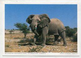 NAMIBIA - AK 189006 Ovamboland - Im Etoscha National Park - Namibia