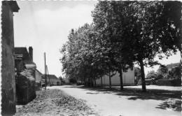Cpsm MASLACQ, (B.P) La Place Du Fronton   (31.47) - Autres Communes