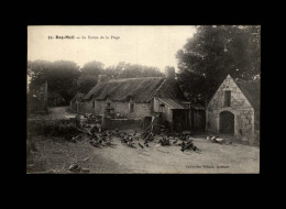 29 - BEG MEIL - Ferme - Poules - Basse-cour - Beg Meil