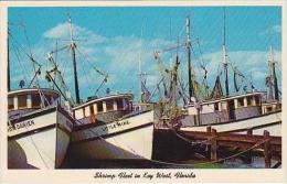 Florida Key West Shrimp Fleet Curteich